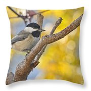 Chickadee With His Prize Throw Pillow