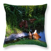 Chicken By The Pond Throw Pillow