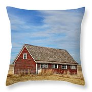 Chicken Coop - 2 Throw Pillow
