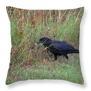 Chicken Eating Crow Throw Pillow