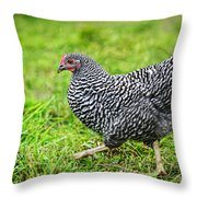 Chicken Walking On Green Pasture Throw Pillow
