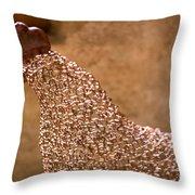 Chicken Wire Throw Pillow