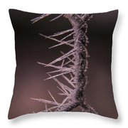 Chicken Wire Spikes Throw Pillow
