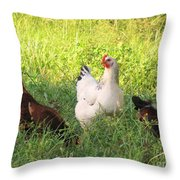 Chickens In Tall Grass Throw Pillow