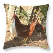 Chickens In The Pin Throw Pillow