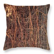 Chickenwire Rusty Throw Pillow