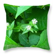 Chickweed Trio Throw Pillow