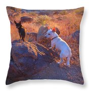 Chico And Paco The Mountain Dogs Throw Pillow