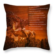 Chief Shabbona And The Ten Indian Commandments Throw Pillow