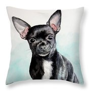 Chihuahua Black Throw Pillow