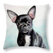 Chihuahua Black Throw Pillow