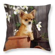 Chihuahua Dog In Flowerpot Throw Pillow