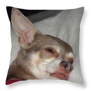 Chihuahua Dreams Throw Pillow