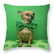 Chihuahua Wearing A Bowtie For St Canvas Print Canvas Art By Ian Ross Pettigrew
