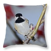 Chikadee On A Limb Throw Pillow