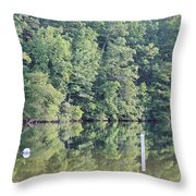 Chilhowee Throw Pillow
