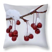Chilled Throw Pillow