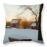 Chilled Seat Throw Pillow