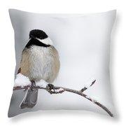 Chim Chim Chickadee Throw Pillow