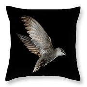 Chimney Swift Throw Pillow