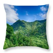 Chimney Tops Mountain In Great Smoky Mountains  Throw Pillow