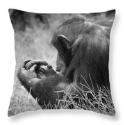 Chimpanzee In Thought Throw Pillow