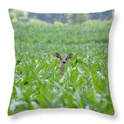 Chin High By The 4th 7395 Throw Pillow