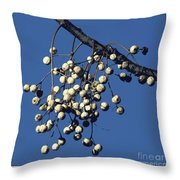 China Berry Cluster Throw Pillow