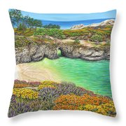 China Cove Paradise Throw Pillow