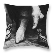 China: Lily Foot, C1900 Throw Pillow