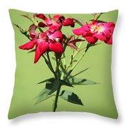 China Rose Throw Pillow