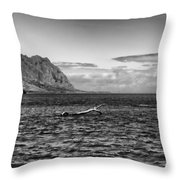 Chinaman's Hat Island From A Different Angle Throw Pillow