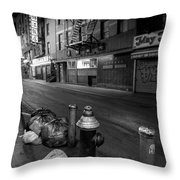 Chinatown New York City - Joe's Ginger On Pell Street Throw Pillow