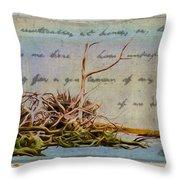 Chincoteague Driftoods Throw Pillow