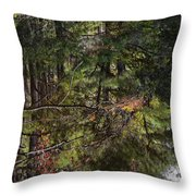 Chincoteague Reflection Throw Pillow