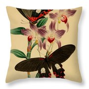 Chinese Butterflies Throw Pillow by Philip Ralley
