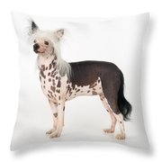 Chinese Crested Dog Throw Pillow