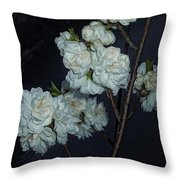 Chinese Flowers Throw Pillow