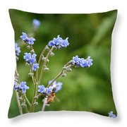 Chinese Forget Me Nots Throw Pillow