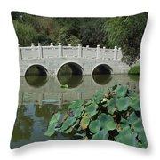 Chinese Garden Scene Throw Pillow