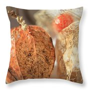 Chinese Lantern Plant - D Throw Pillow