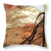 Chinese Lantern Plant - F Throw Pillow