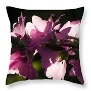 Chinese Mallow Throw Pillow
