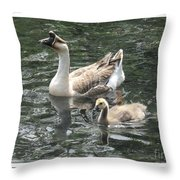 Chinese Swan Goose And Gosling Throw Pillow