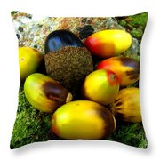 Chinquapin Harvest Throw Pillow