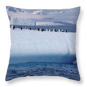 Chinstrap Penguins On Iceberg Throw Pillow
