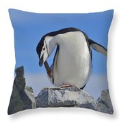 Chinstrap Relief Throw Pillow