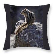 Chipmunk   #2152 Throw Pillow