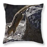 Chipmunk   #2155 Throw Pillow