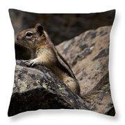 Chipmunk   #8276 Throw Pillow